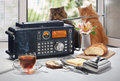 Hot Tea, Bread And Oil On A Table With The Radio Receiver Against An Open Window Royalty Free Stock Image - 74109966