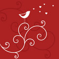 Love Bird Stock Image - 7428921
