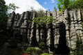 Stone Forest Stock Image - 74225251