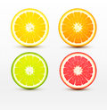 Slices Of Orange, Grapefruit, Lime , Lemon Isolated  Stock Images - 74255964