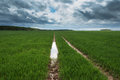 Field After Rain ... Royalty Free Stock Photo - 74340525