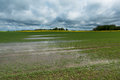 Field After Rain ... Royalty Free Stock Photos - 74340988