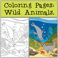 Coloring Page With Example. Two Little Cute Seals. Royalty Free Stock Photos - 74399088