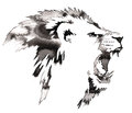 Black And White Monochrome Painting With Water And Ink Draw Lion Illustration Royalty Free Stock Photography - 74412437