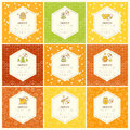 Vector Packaging Design - Natural Honey Collection Royalty Free Stock Photo - 74417935