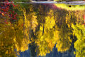 Fall Colors Wenatchee River Relections Royalty Free Stock Images - 7455529