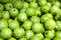 Guava Stock Photography - 7458782