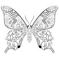 Butterfly Vector Illustration.Zentangle Style. Stock Photo - 74557850