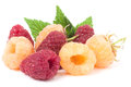 Red And Yellow Raspberries With Leaves On A White Background Royalty Free Stock Image - 74563116