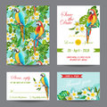Invitation Or Greeting Card Set - Tropical Birds And Flowers Design Stock Photography - 74563832