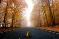 Fall Road In The Forest Stock Image - 74589081