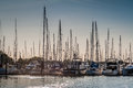 Crowded Masts In Point Roberts Marina Royalty Free Stock Photography - 74614247