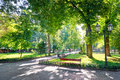Morning In City Park, Bright Sunlight And Shadows, Summer Season, Beautiful Landscape Royalty Free Stock Image - 74660776