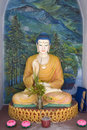 Buddha Statue Royalty Free Stock Images - 7476739
