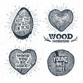 Hand Drawn Vintage Badges Set With Textured Tree Trunks Vector Illustrations. Royalty Free Stock Photography - 74719267
