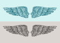 Hand Drawn Vintage Angel Wings. Sketch Vector Illustration Royalty Free Stock Photo - 74794345