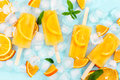 Fruit Homemade Popsicle With Slices Of Orange And Ice Cubes Royalty Free Stock Images - 74868319