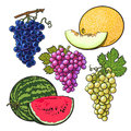 Collection Of Red, Green, Purple Grapes, Melon And Watermelon Royalty Free Stock Image - 74911046