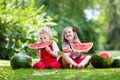Kids Eating Watermelon In The Garden Royalty Free Stock Image - 74929856