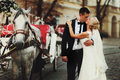 Groom Kisses A Bride Behind A Carriage Royalty Free Stock Photography - 74948417