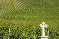 Vineyards On The Moselle Wine Village, Germany Royalty Free Stock Photo - 74960645