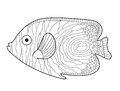 Fish Sketch Doodle Style. Hand Drawing. Fish Coloring Book. Vector Illustration Royalty Free Stock Photography - 75014977