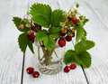 Glass With Wild Strawberries Royalty Free Stock Photo - 75049575