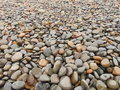 Stones On A Beach Stock Image - 75142501