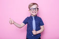 Portrait Of A Little Smiling Boy In A Funny Glasses And Tie. School. Preschool. Fashion. Studio Portrait Over Pink Background Stock Photo - 75159410