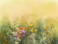 Watercolor Painting Wildflowers And Soft Leaves Stock Image - 75191851