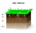 Soil Profile Stock Photo - 75256660