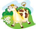 A Cow On A Meadow Stock Photo - 7532740