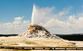 White Dome Geyser Erupting Yellowstone National Park Geothermal Stock Photography - 75353972