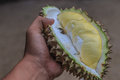 Durian Royalty Free Stock Image - 75359426