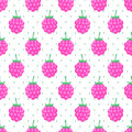 Seamless Background With Pink Raspberry. Royalty Free Stock Image - 75371406