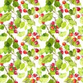 Green Leaves And Berries. Seamless Pattern. Watercolor Royalty Free Stock Photos - 75531118