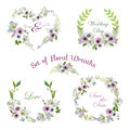 Lily And Anemone Flowers Floral Wreaths Banners And Tags Stock Images - 75545194