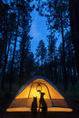 Dog And Cat Camping Under Stars Stock Photography - 75603102