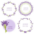 Floral Lavender Design In Circle Royalty Free Stock Image - 75613806
