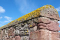 Crustose Lichen And Red Stone Wall Stock Images - 75629004
