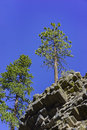 Special Geology In Devils Postpile National Monument Stock Photos - 75643323