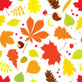 Autumn Seamless Pattern Of Different Tree Leaves Royalty Free Stock Photography - 75755097