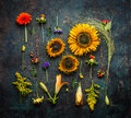 Various Autumn Plant And Flowers On Dark Vintage Background, Top View Stock Photos - 75781243