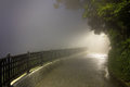 Mystery Fog In The Dark Park With Way To Light Royalty Free Stock Images - 75788759