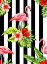 Flamingo And Hibiscus Tropical Pattern, Striped Background Royalty Free Stock Photography - 75854887