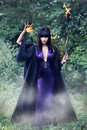 Witch Holding A Fireball Stock Photo - 75898180