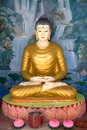 Buddha Statue Stock Images - 7598974