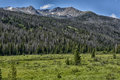 Rocky Mountain National Park Royalty Free Stock Images - 75925819