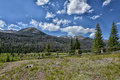 Rocky Mountain National Park Royalty Free Stock Photography - 75925827