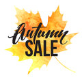 Autumn Leaves. Watercolor Texture. Fall Leaf. Sale Lettering Design. Vector Illustration Royalty Free Stock Photos - 75927268